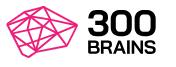 300Brains Blog